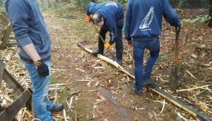 Hard werken in de bossen, pionierhout schoonmaken